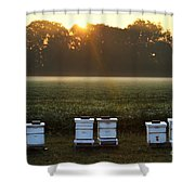 Beehives At Sunrise Shower Curtain