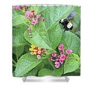 Beeing Amongst The Flowers Shower Curtain