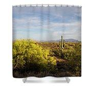 Beeline Bloom Shower Curtain