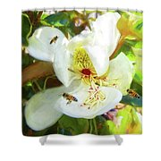 Bees On Open Magnolia Shower Curtain