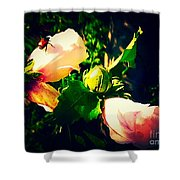 Beetle Hanging Out With Hibiscus Flowers Shower Curtain