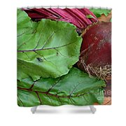 Beetroot Shower Curtain
