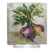 Beets Me Shower Curtain