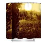 Before It Is Gone Shower Curtain