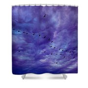 Before It Storms Shower Curtain