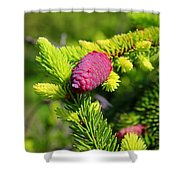 Before Spring Ends Shower Curtain