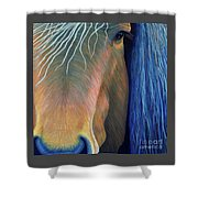Before Sundown Shower Curtain