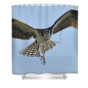 Before The Catch Shower Curtain
