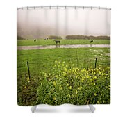 Before The Flood Shower Curtain