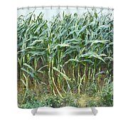 Before The Harvest Shower Curtain
