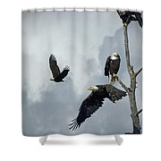 Before The Storm Shower Curtain
