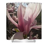 Before The Winds Blow Shower Curtain