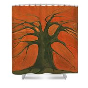 Beginning Of Life Shower Curtain