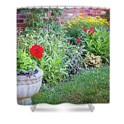 Begonia And Rose Shower Curtain