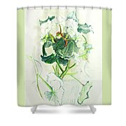 Begonia Ballet Shower Curtain