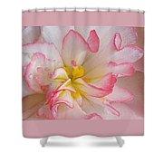 Begonia Pink Frills - Horizontal Shower Curtain