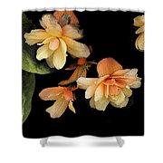 Begonias 2 Shower Curtain