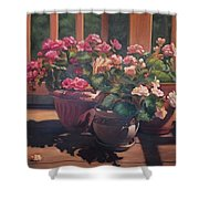 Begonias On Deck Shower Curtain