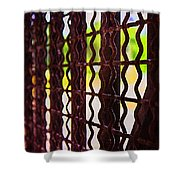 Behind The Bars Shower Curtain
