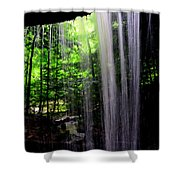 Behind The Falls Shower Curtain