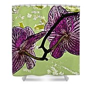 Behind The Orchids Shower Curtain