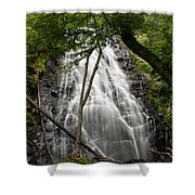 Behind The Tree Shower Curtain