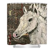 Behold A White Horse Shower Curtain