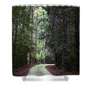 Beidler Forest Shower Curtain