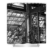 Beijing City 20 Shower Curtain