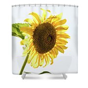 Being Neighborly -  Shower Curtain