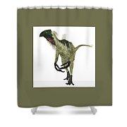 Beipiaosaurus Dinosaur On White Shower Curtain