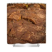 Belfast Petroglyph 6 Shower Curtain