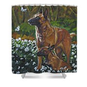 Belgian Malinois With Pup Shower Curtain
