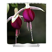 Bell Flower Shower Curtain