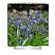 Bell Flowers  Shower Curtain