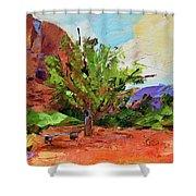 Sedona Pathway  Shower Curtain