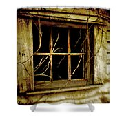 Bella Finestra Shower Curtain
