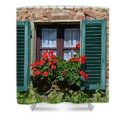 Bella Italian Window  Shower Curtain