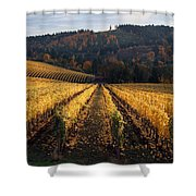 Bella Vida Vineyard 1 Shower Curtain