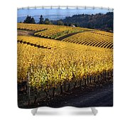 Bella Vida Vineyard 3 Shower Curtain