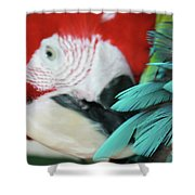 belle Ara Macao oiseaux tropicaux de Maui  Shower Curtain