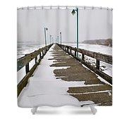Belle Isle Bridge Shower Curtain
