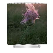 Belles Flower Shower Curtain