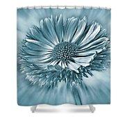 Bellis In Cyan  #flower #flowers Shower Curtain