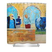 Belted Galloway Cows And People At Exeter Cathedral Shower Curtain