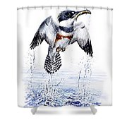 Belted Kingfisher Shower Curtain by Christopher Cox