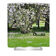 Bench Among Magnolia Shower Curtain