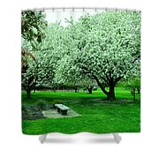 Bench Among.the Blossoms Shower Curtain