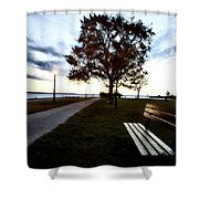 Bench And Street Light Shower Curtain