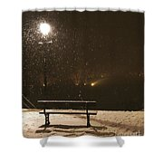 Bench For The Snowflakes Shower Curtain
